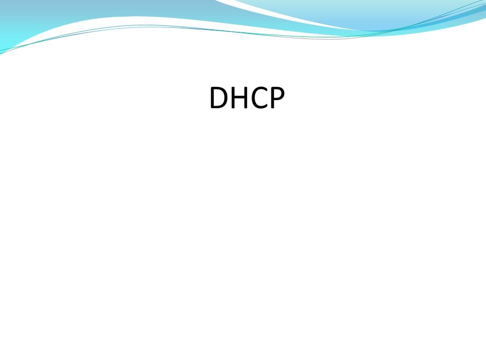 Verifying DHCP