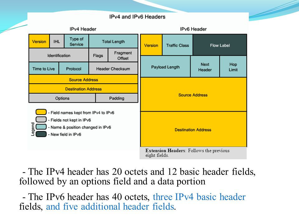 - The IPv4 header has 20 octets and 12 basic header fields, followed by an options field and a data portion - The IPv6 header has 40 octets, three IPv