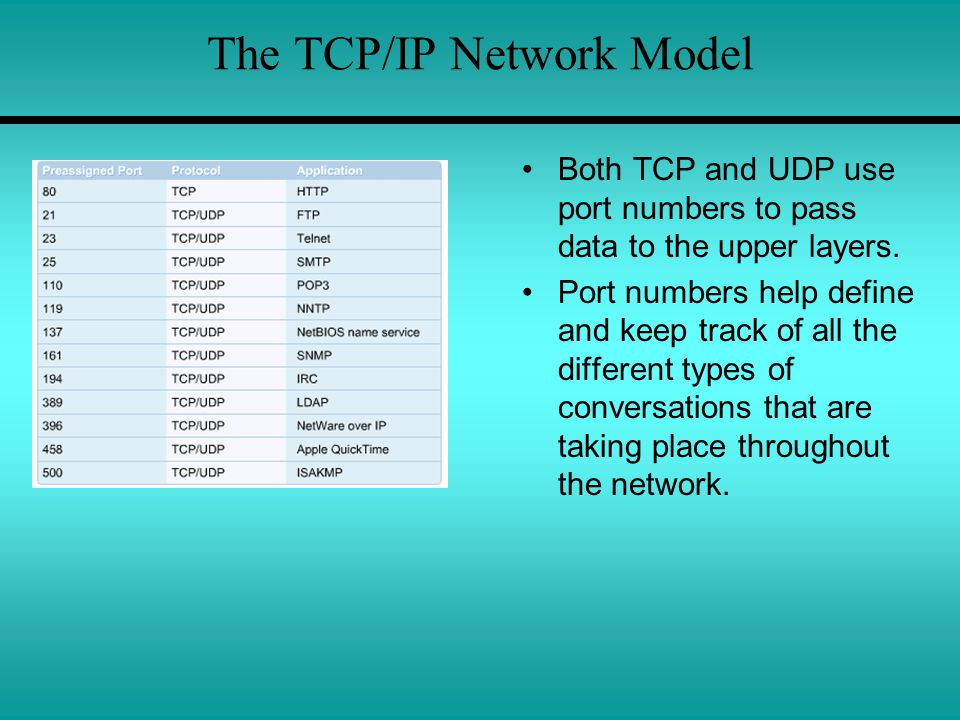 The TCP/IP Network Model Both TCP and UDP use port numbers to pass data to the upper layers.