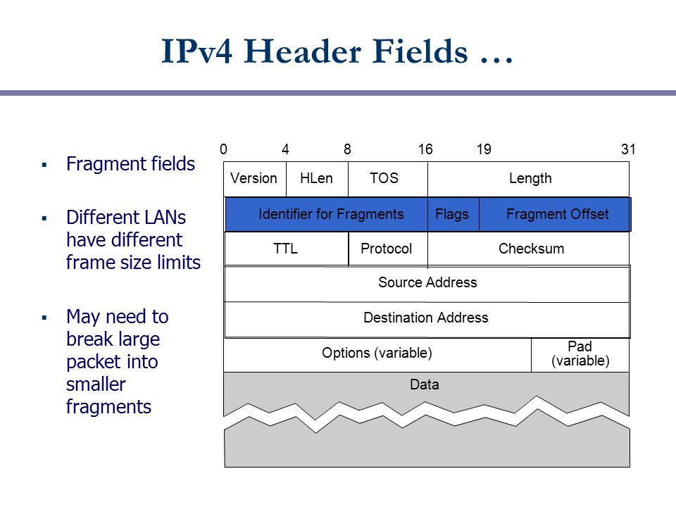 IPv4 Header Fields …  Fragment fields  Different LANs have different frame size limits  May need to break large packet into smaller fragments Versi