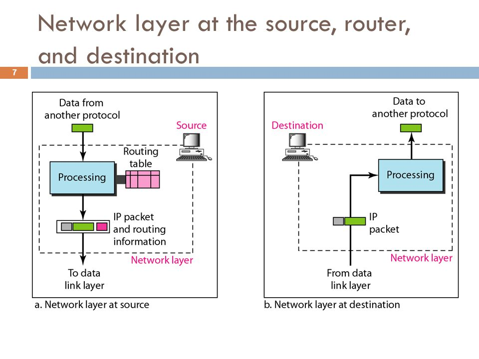 Network layer at the source, router, and destination 7