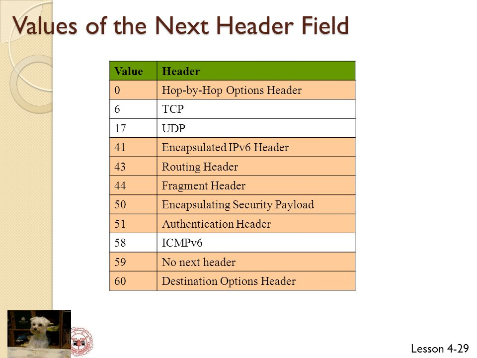 Lesson 4-29 資 管 Values of the Next Header Field ValueHeader 0Hop-by-Hop Options Header 6TCP 17UDP 41Encapsulated IPv6 Header 43Routing Header 44Fragment Header 50Encapsulating Security Payload 51Authentication Header 58ICMPv6 59No next header 60Destination Options Header