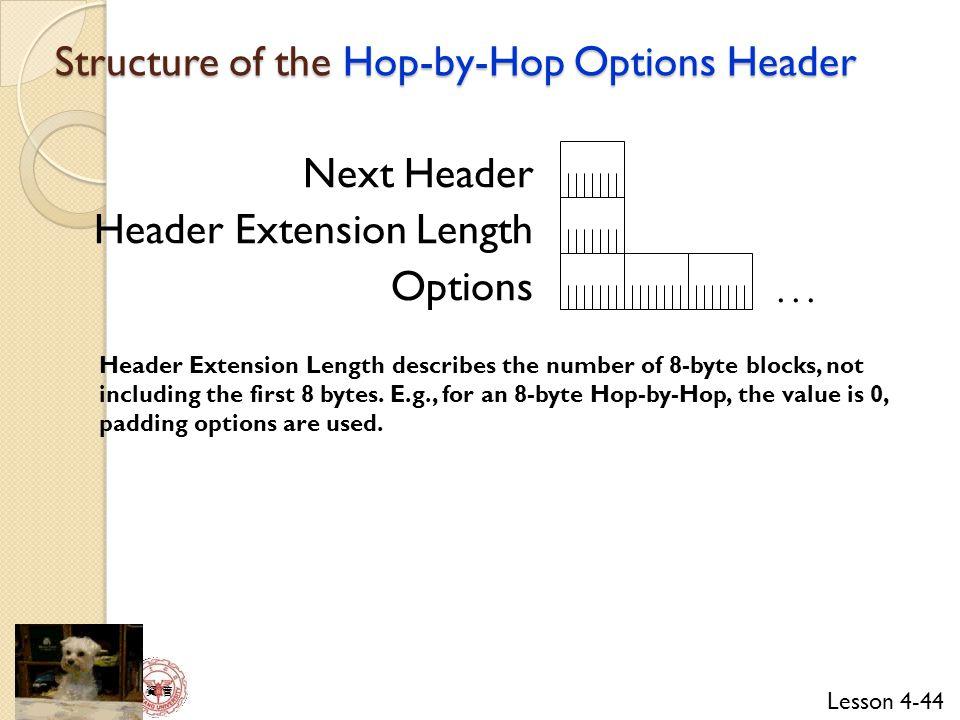 Lesson 4-44 資 管 Next Header Header Extension Length Options...