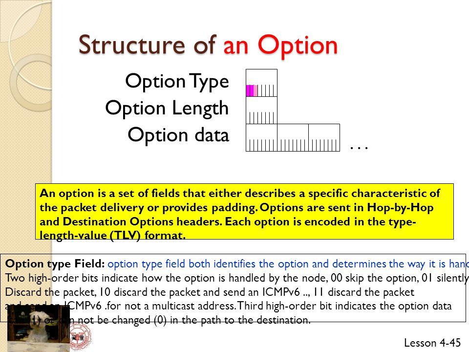 Lesson 4-45 資 管 Option Type Option Length Option data...