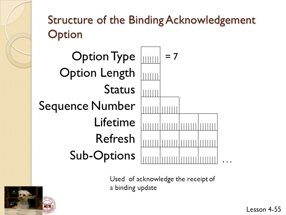 Lesson 4-55 資 管 Structure of the Binding Acknowledgement Option Option Type Option Length Status Sequence Number Lifetime Refresh Sub-Options = 7...