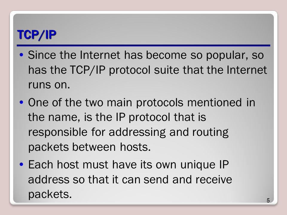 TCP/IP Since the Internet has become so popular, so has the TCP/IP protocol suite that the Internet runs on.