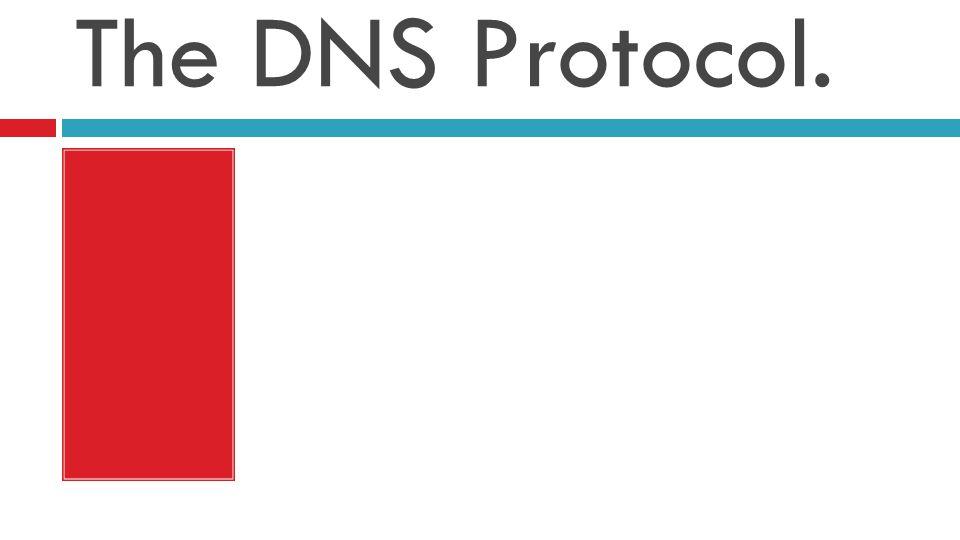 The DNS Protocol.