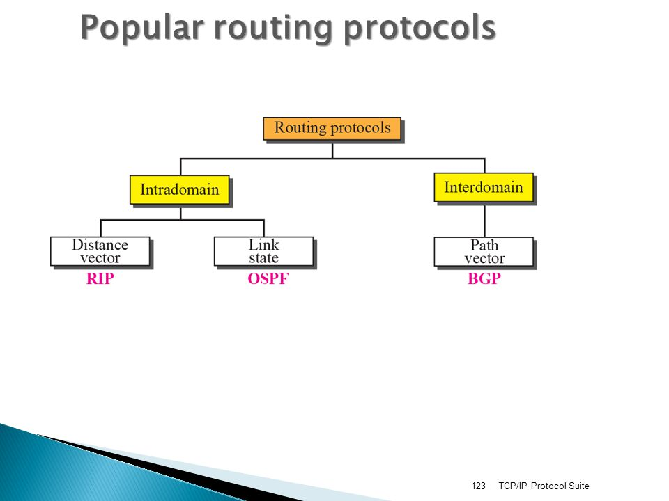 TCP/IP Protocol Suite123 Popular routing protocols