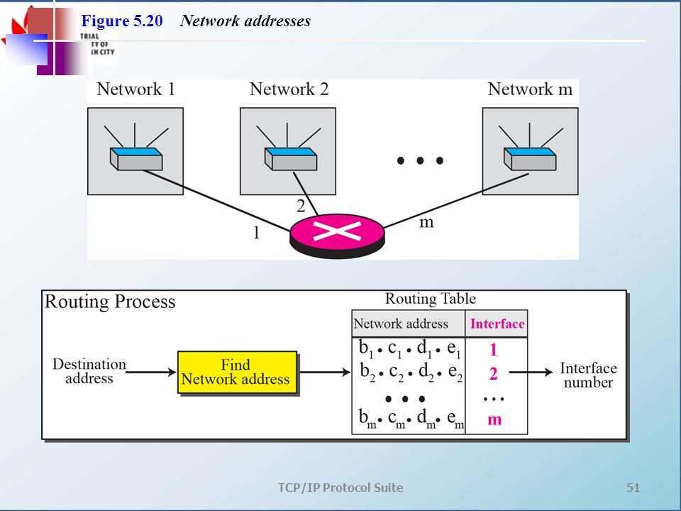 TCP/IP Protocol Suite51 Figure 5.20 Network addresses