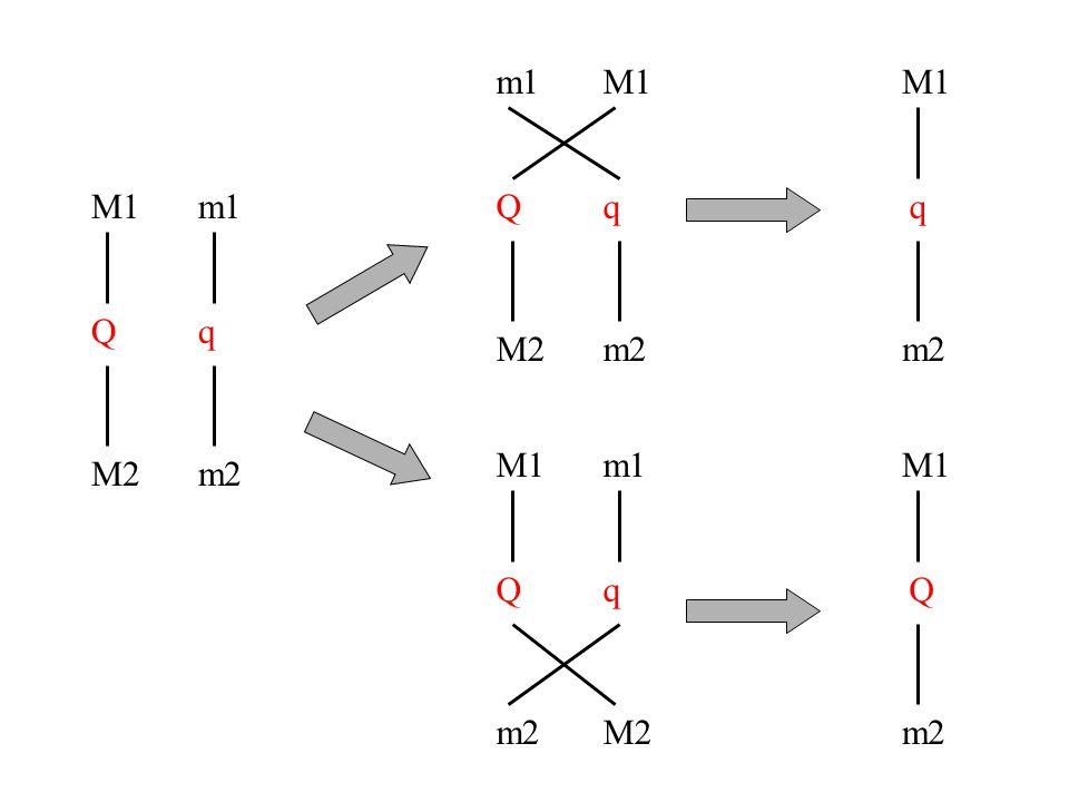 M1 Q M2 m1 q m2 M1 Q m2 M1 Q m2 m1 q M2 m1 Q M2 M1 q m2 M1 q m2
