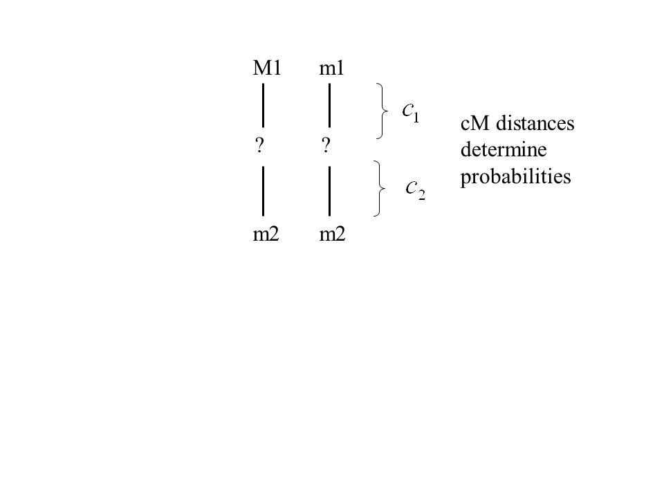 M1 ? m2 m1 ? m2 cM distances determine probabilities
