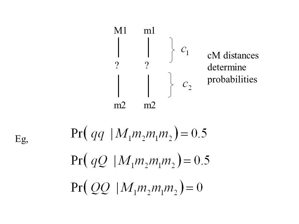 M1 ? m2 m1 ? m2 cM distances determine probabilities Eg,