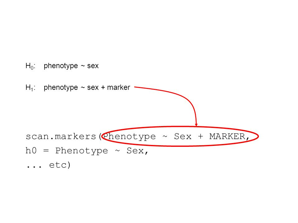 scan.markers(Phenotype ~ Sex + MARKER, h0 = Phenotype ~ Sex,...