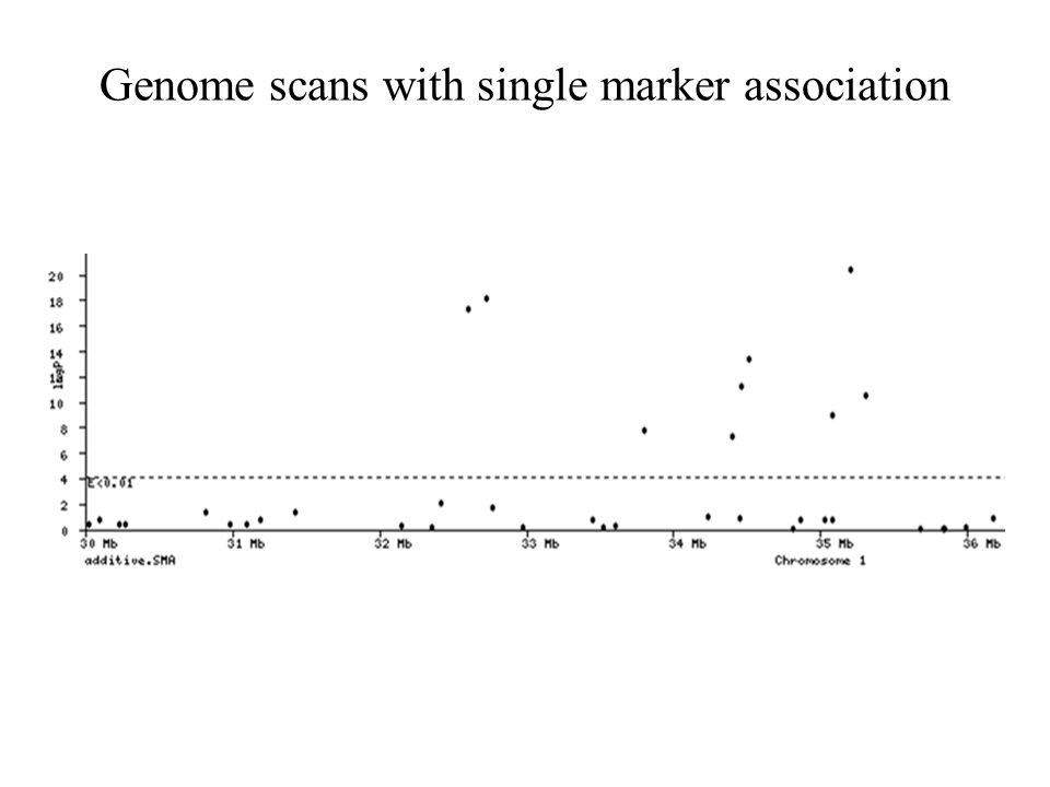 Genome scans with single marker association