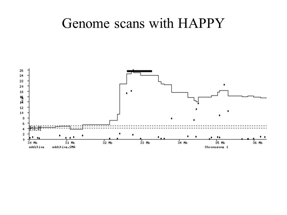 Genome scans with HAPPY