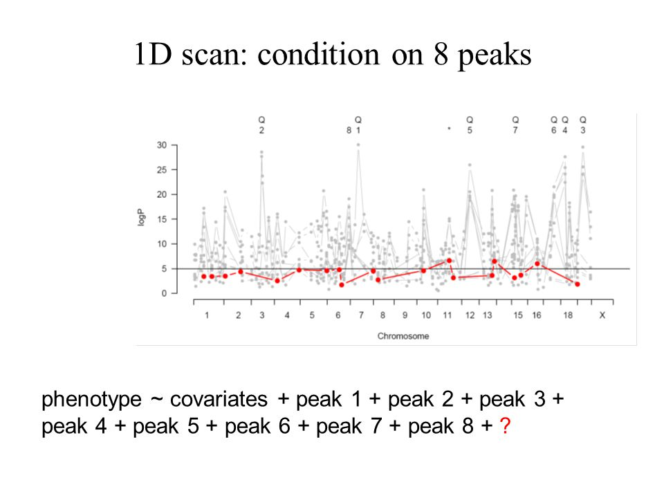 1D scan: condition on 8 peaks phenotype ~ covariates + peak 1 + peak 2 + peak 3 + peak 4 + peak 5 + peak 6 + peak 7 + peak 8 +