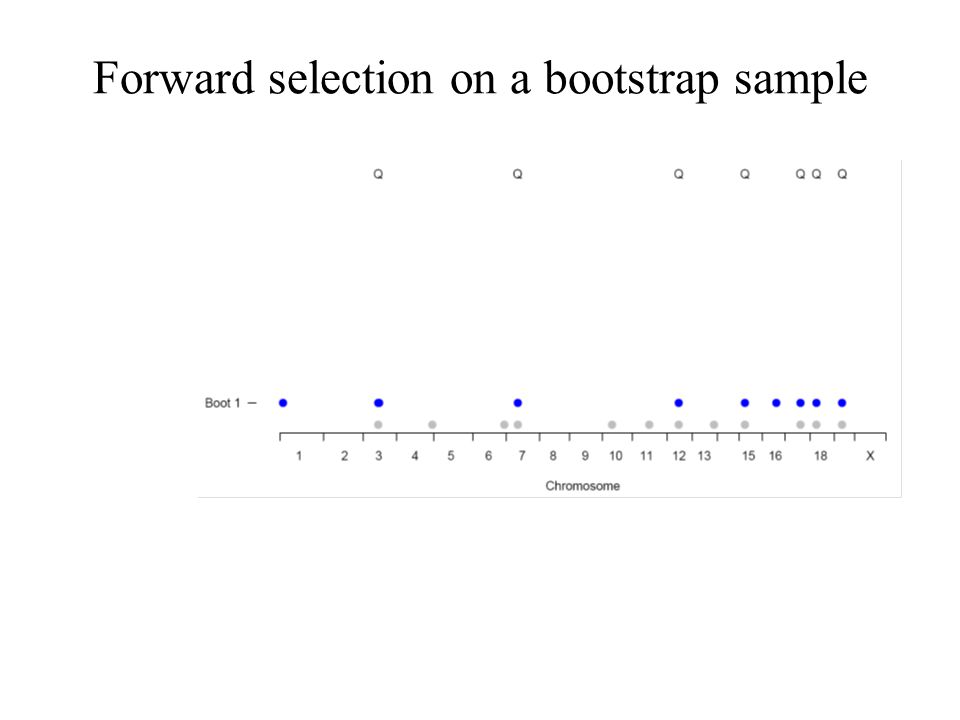 Forward selection on a bootstrap sample