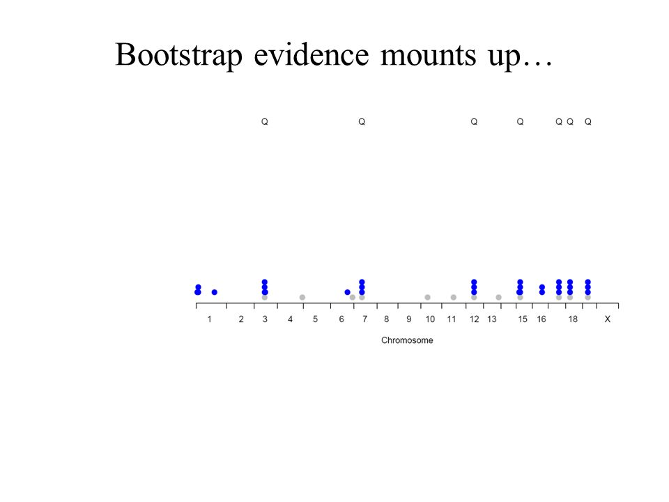Bootstrap evidence mounts up…