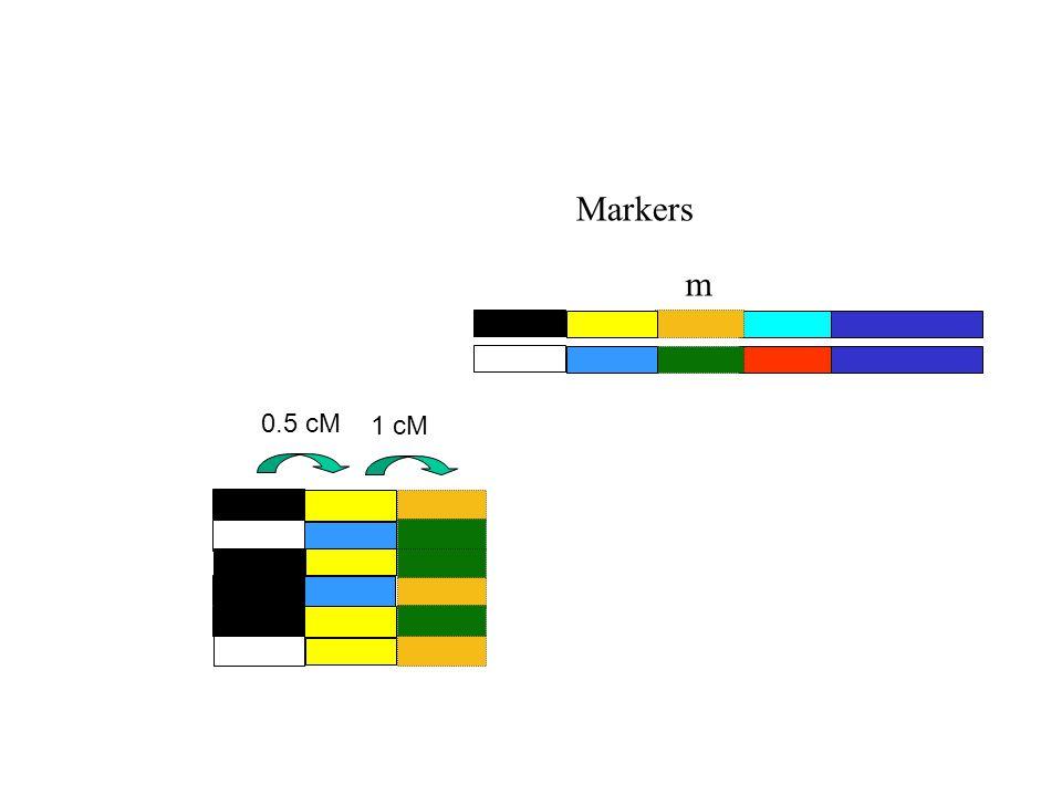 Markers m 0.5 cM 1 cM