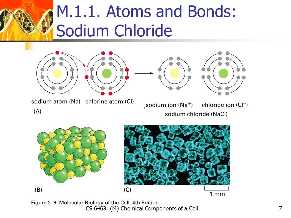 CS 6463: (M) Chemical Components of a Cell8 M.1.1. Atoms and Bonds: The Geometry of Covalent Bonds