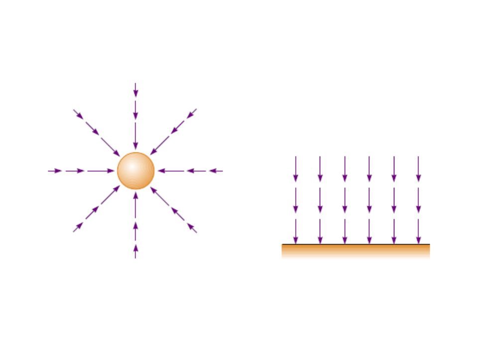 We have used the same symbol نفس الرمز g for gravitational field magnitude that we used earlier for the acceleration of free fall.