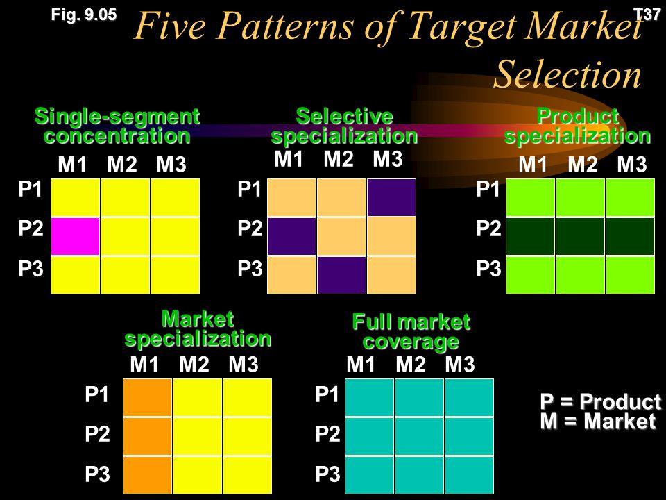 Segment-by-Segment Invasion Plan T38 Fig.