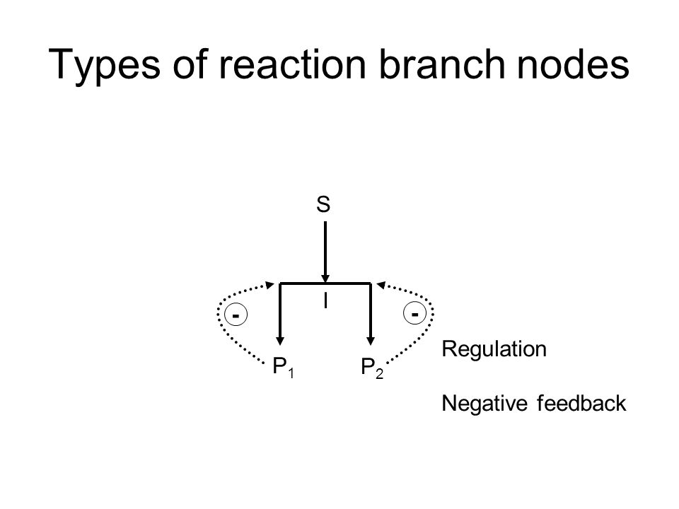 Types of reaction branch nodes P1P1 P2P2 I S - - Regulation Negative feedback