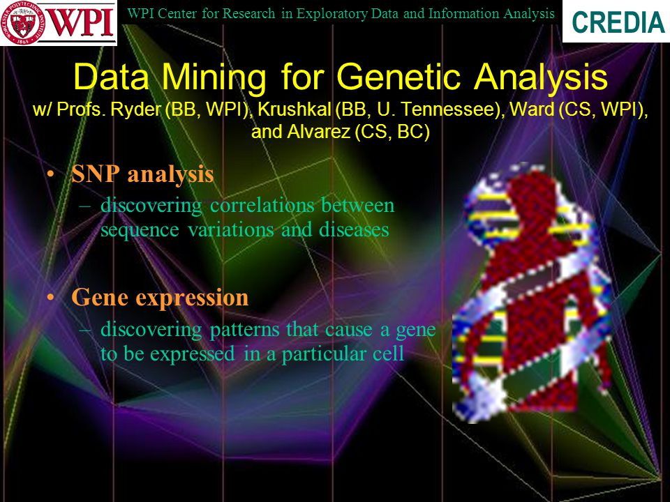 WPI Center for Research in Exploratory Data and Information Analysis CREDIA Data Mining for Genetic Analysis w/ Profs.