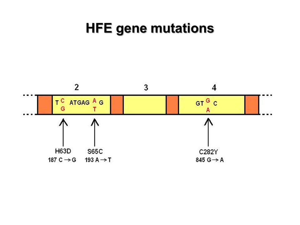 HFE gene mutations