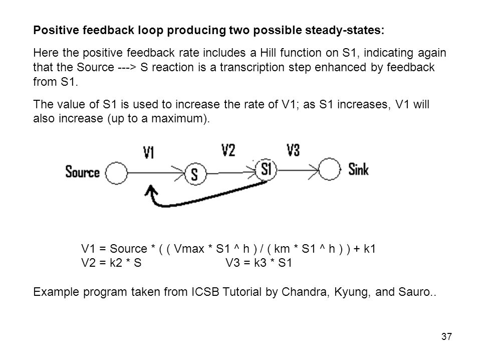 37 Positive feedback loop producing two possible steady-states: Here the positive feedback rate includes a Hill function on S1, indicating again that the Source ---> S reaction is a transcription step enhanced by feedback from S1.