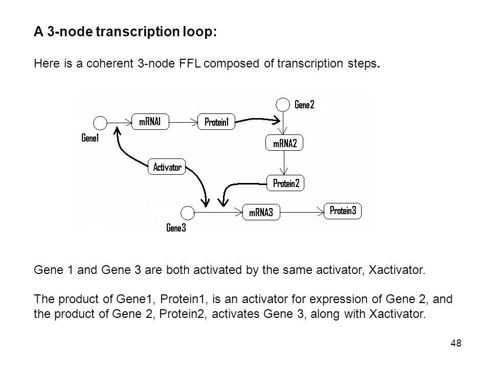 48 A 3-node transcription loop: Here is a coherent 3-node FFL composed of transcription steps.