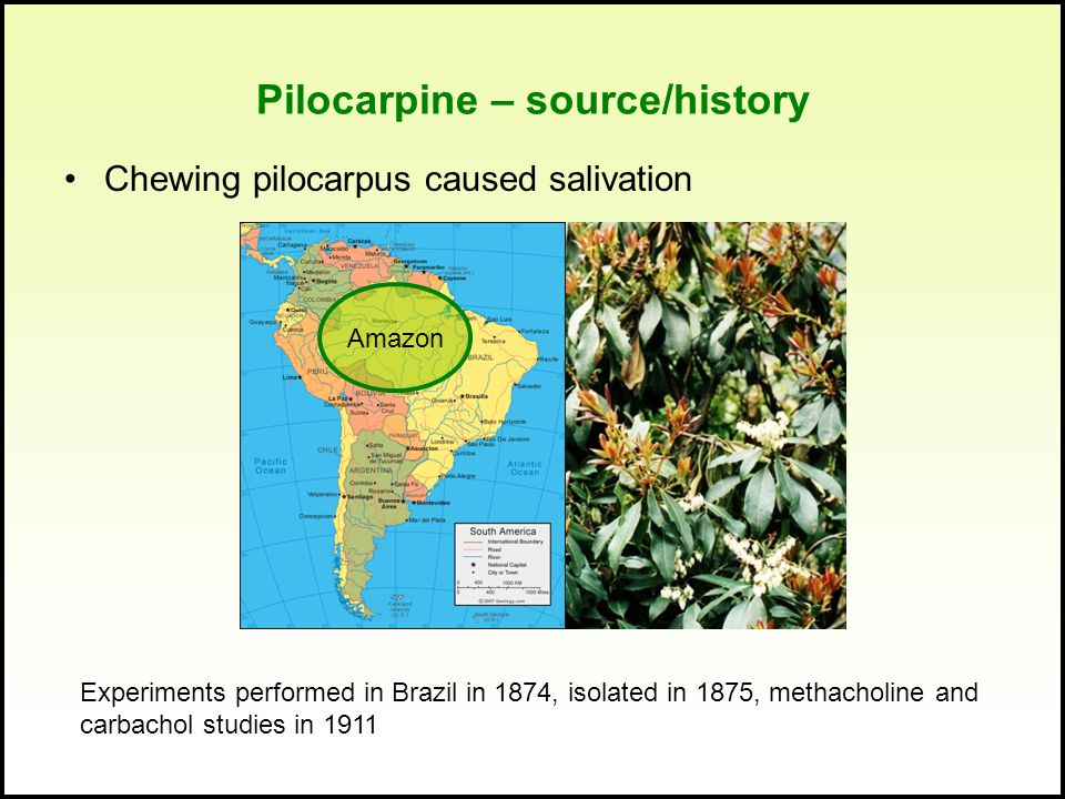 Pilocarpine – source/history Chewing pilocarpus caused salivation Amazon Experiments performed in Brazil in 1874, isolated in 1875, methacholine and c