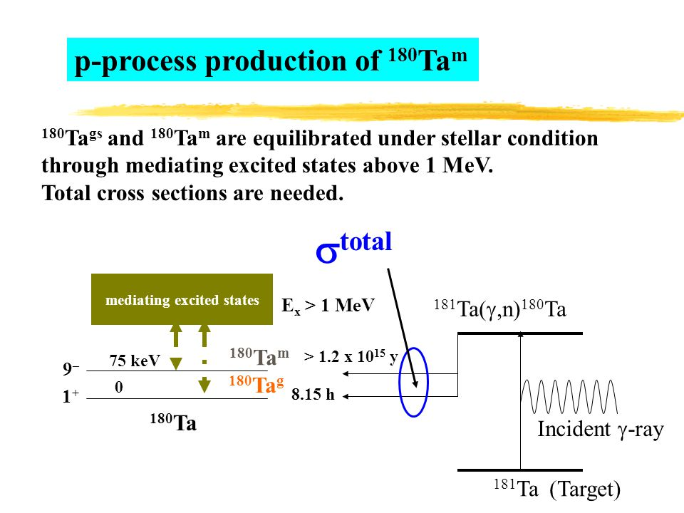 1+1+ 9–9– 0 75 keV 180 Ta g > 1.2 x 10 15 y 8.15 h 180 Ta m mediating excited states E x > 1 MeV Incident  -ray 181 Ta (Target) 181 Ta( ,n) 180 Ta 180 Ta p-process production of 180 Ta m 180 Ta gs and 180 Ta m are equilibrated under stellar condition through mediating excited states above 1 MeV.