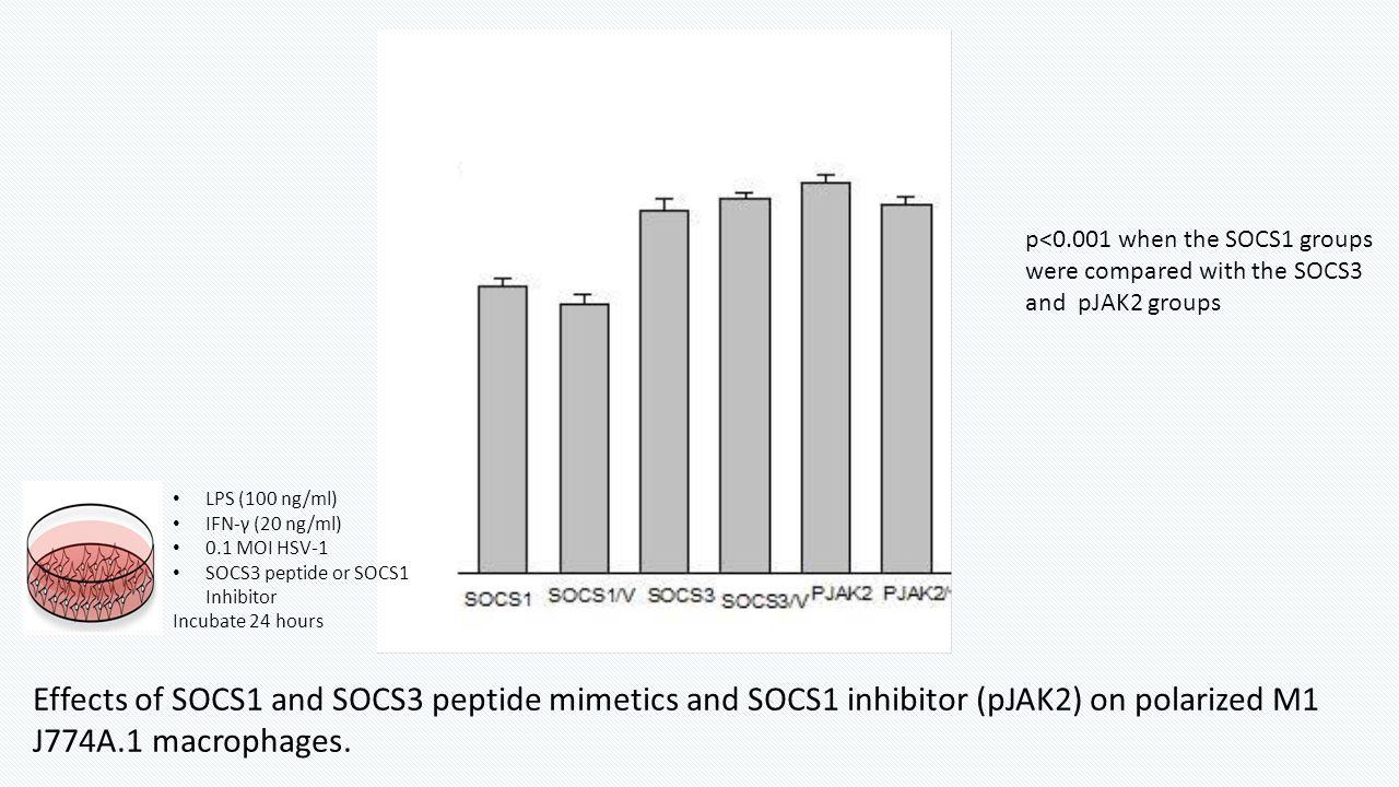 LPS (100 ng/ml) IFN-γ (20 ng/ml) 0.1 MOI HSV-1 SOCS3 peptide or SOCS1 Inhibitor Incubate 24 hours Effects of SOCS1 and SOCS3 peptide mimetics and SOCS