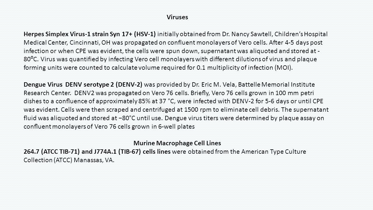 Viruses Herpes Simplex Virus-1 strain Syn 17+ (HSV-1) initially obtained from Dr. Nancy Sawtell, Children's Hospital Medical Center, Cincinnati, OH wa