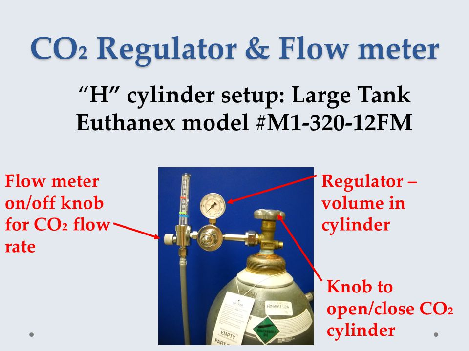 CO₂ Regulator & Flow meter H cylinder setup: Large Tank Euthanex model #M1-320-12FM Flow meter on/off knob for CO₂ flow rate Regulator – volume in cylinder Knob to open/close CO₂ cylinder