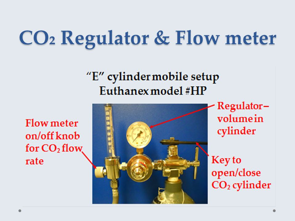 CO₂ Regulator & Flow meter