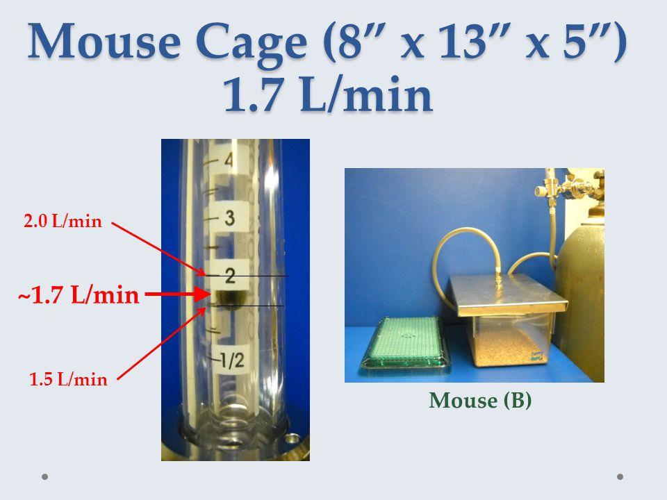 Mouse Cage (8 x 13 x 5 ) 1.7 L/min ~1.7 L/min 1.5 L/min 2.0 L/min Mouse (B)