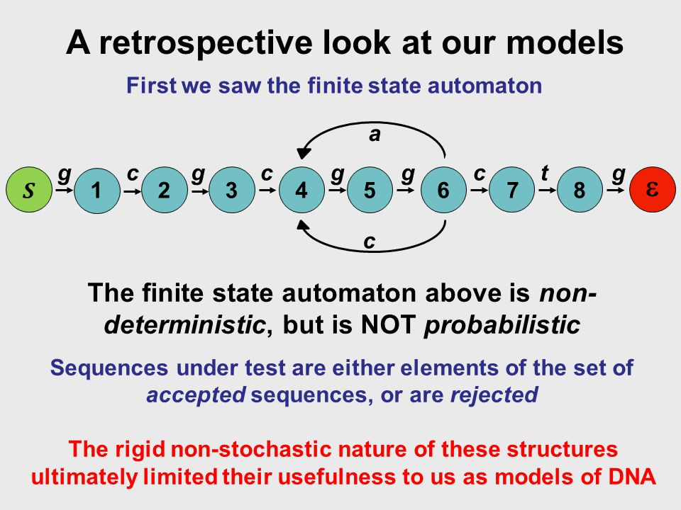 A retrospective look at our models First we saw the finite state automaton The rigid non-stochastic nature of these structures ultimately limited their usefulness to us as models of DNA 12345678 S  ggggcgctc c a The finite state automaton above is non- deterministic, but is NOT probabilistic Sequences under test are either elements of the set of accepted sequences, or are rejected