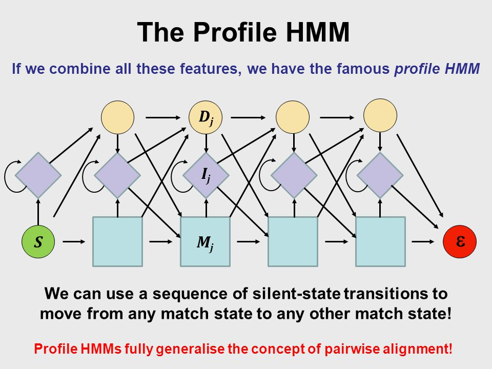 The Profile HMM If we combine all these features, we have the famous profile HMM S  We can use a sequence of silent-state transitions to move from any match state to any other match state.