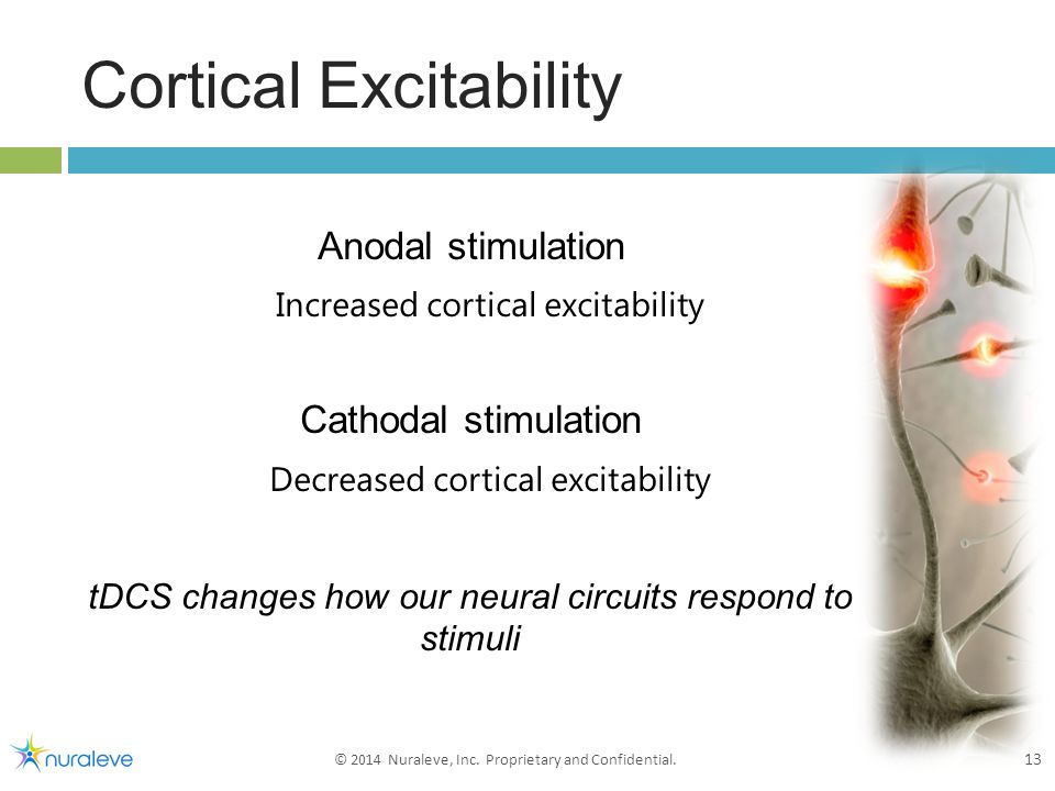 Cortical Excitability 13 © 2014 Nuraleve, Inc. Proprietary and Confidential.