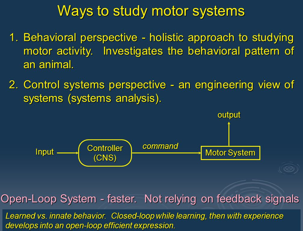 1.Behavioral perspective - holistic approach to studying motor activity. Investigates the overt behavioral patterns of an animal. 2.Control systems pe