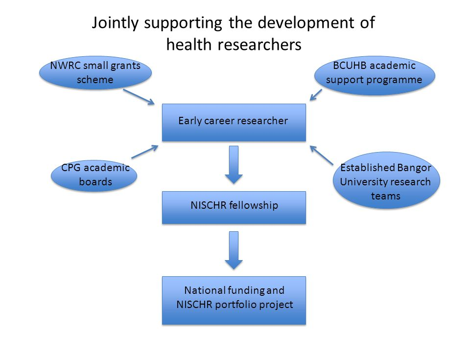 Early career researcher NWRC small grants scheme BCUHB academic support programme CPG academic boards Established Bangor University research teams NIS