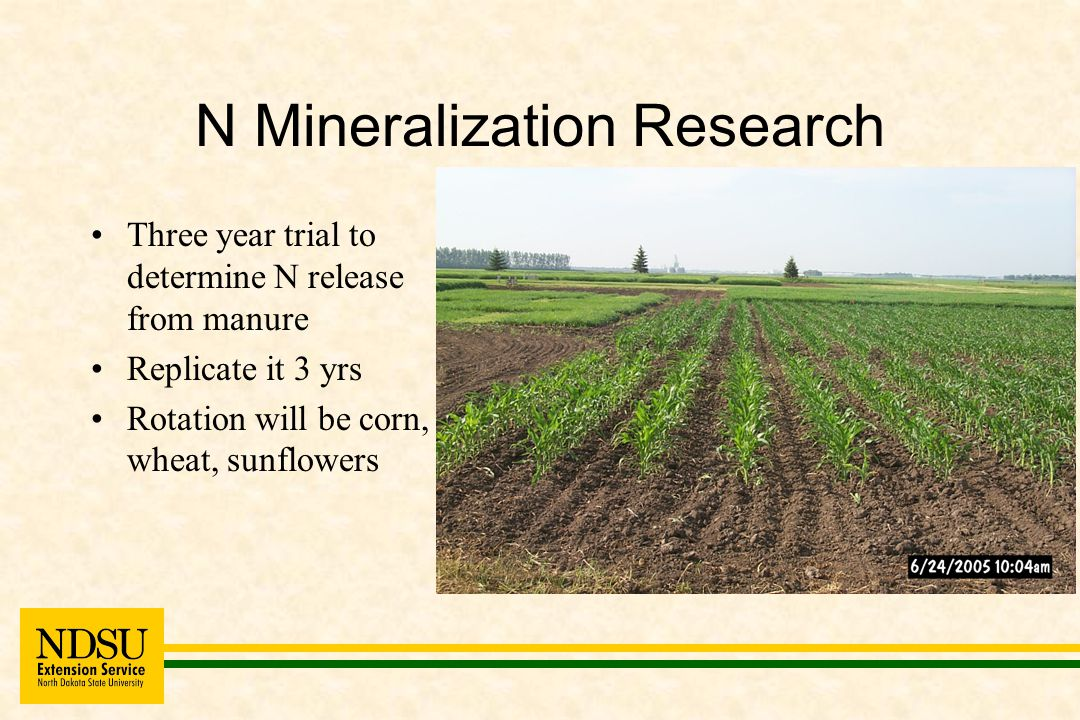 CST Summary Crop yields are not affected by tillage but N source does impact yields Mineralization of beef feedlot manure is the same when incorporated or left on the surface NO 3 - N carry-over is impacted by tillage with no-till showing the least amount