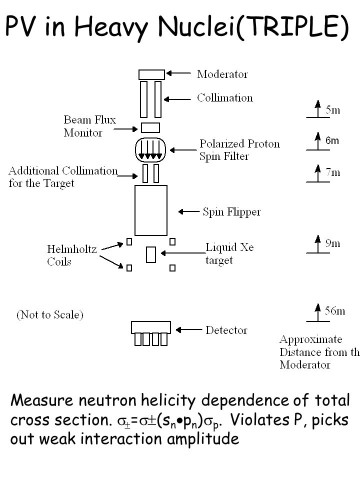 PV in Heavy Nuclei(TRIPLE) Measure neutron helicity dependence of total cross section.