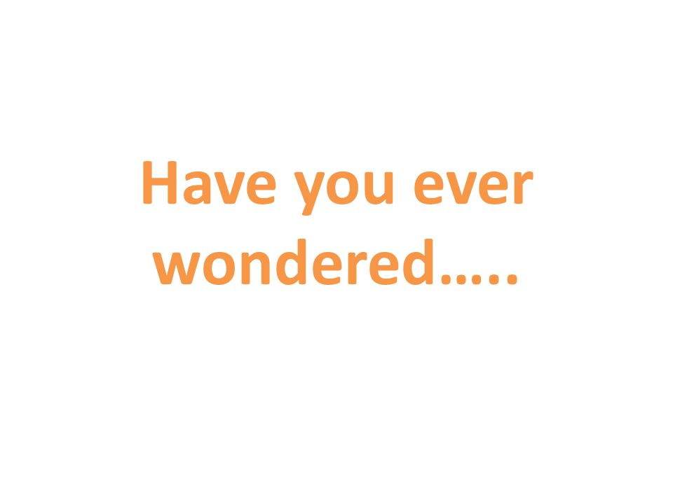 Have you ever wondered…..