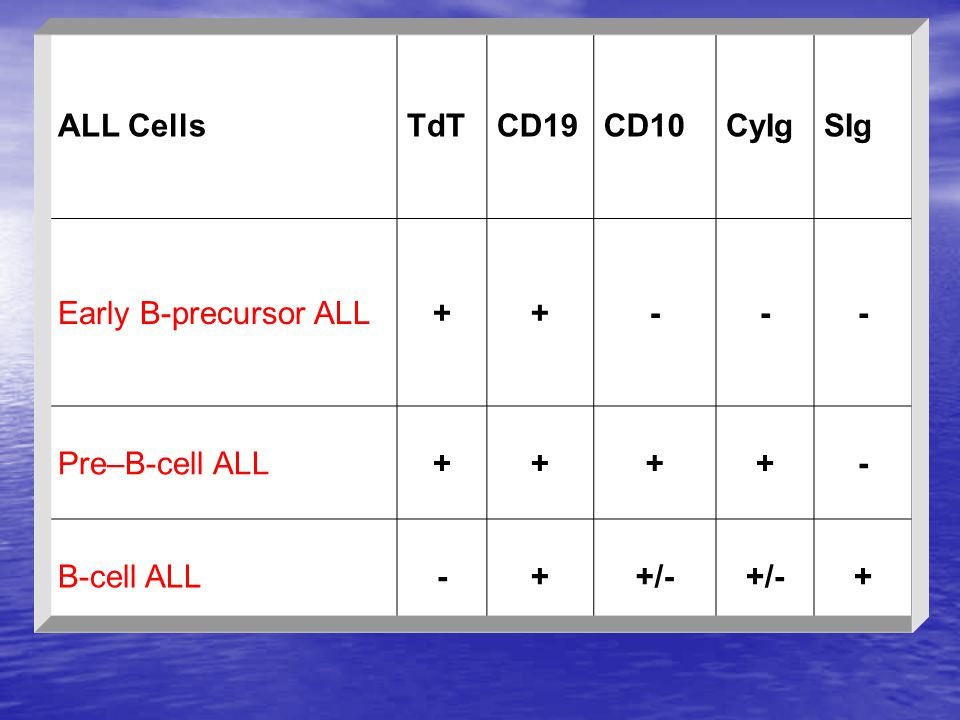 SIgCyIgCD10CD19TdTALL Cells ---++Early B-precursor ALL -++++Pre–B-cell ALL ++/- +-B-cell ALL