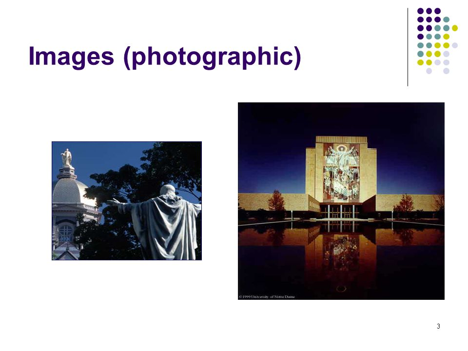 3 Images (photographic)