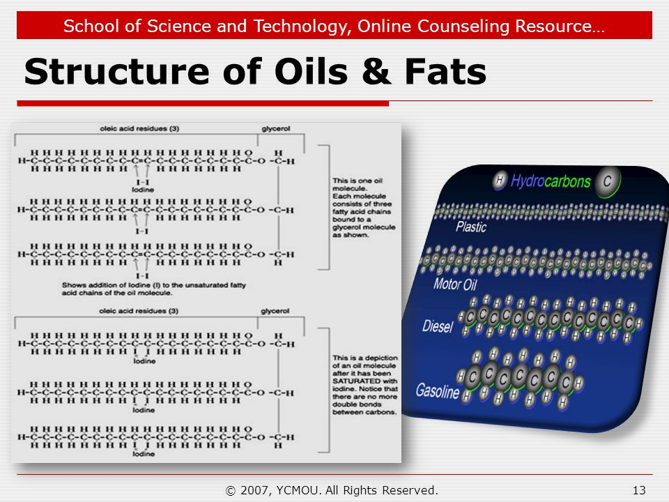 School of Science and Technology, Online Counseling Resource… Structure of Oils & Fats © 2007, YCMOU. All Rights Reserved.13
