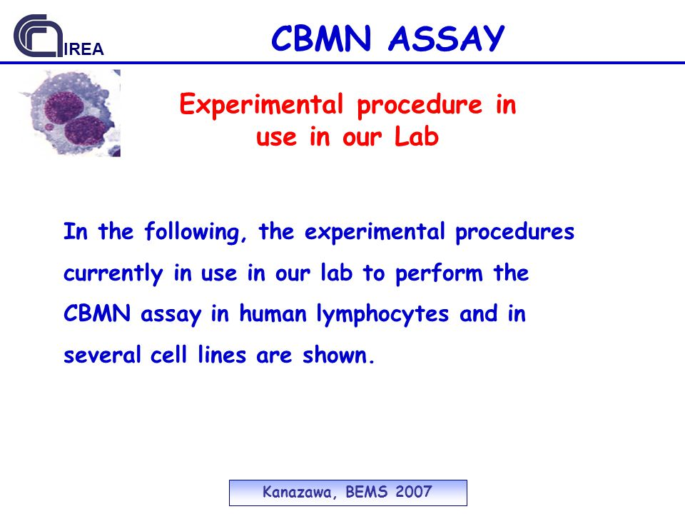 CBMN ASSAY Experimental procedure in use in our Lab Kanazawa, BEMS 2007 IREA In the following, the experimental procedures currently in use in our lab to perform the CBMN assay in human lymphocytes and in several cell lines are shown.
